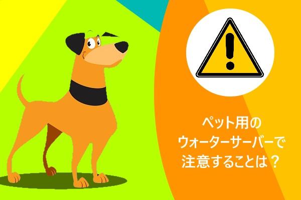 ペット用のウォーターサーバーで注意することは?