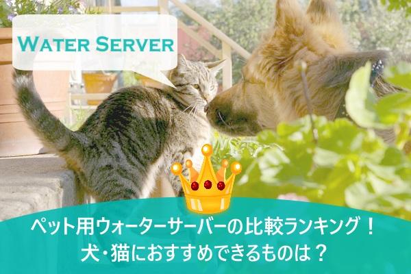 ペット用ウォーターサーバーの比較ランキング!犬・猫におすすめできるものは?