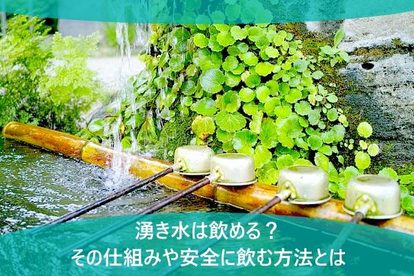 湧き水は飲める?その仕組みや安全に飲む方法とは