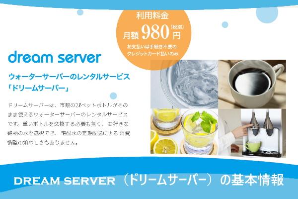 dream server(ドリームサーバー)の基本情報