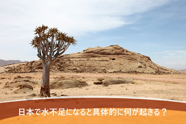 日本で水不足になると具体的に何が起きる?